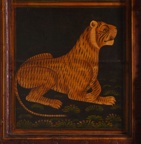 Tigre indien
